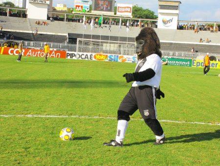 gorila-ponte-preta2